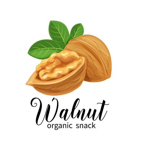walnut in cartoon style Ilustração