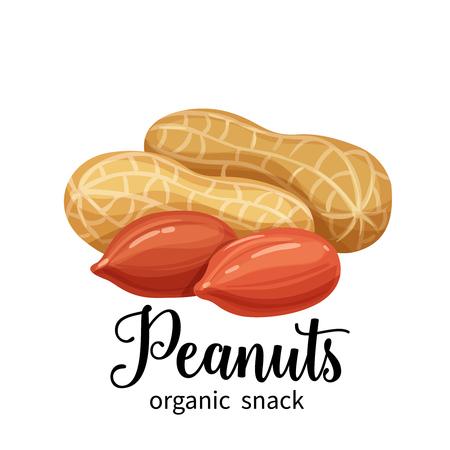 peanuts in cartoon style  イラスト・ベクター素材