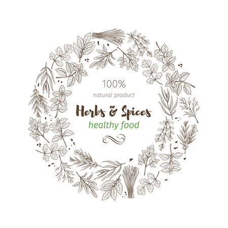 hand drawn sketch herbs and spices Illustration