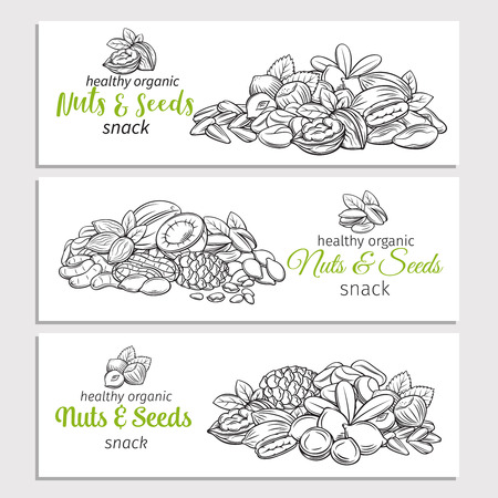 Hand drawn sketch nuts and seeds