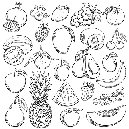 Set of sketch fruits illustration. Ilustração