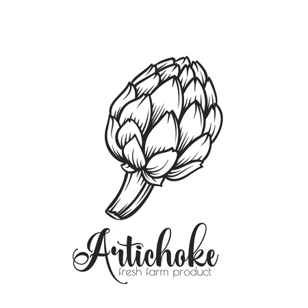 Hand drawn artichoke icon.