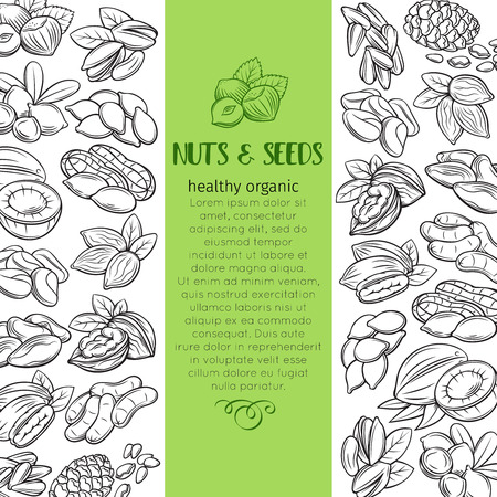 hand drawn nuts and seeds Illustration