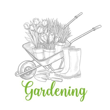 Hand drawn gardening banner. Wheelbarrow, flowers, rubber boots and garden tools in a sketch style. Vector isolated llustration.