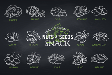 Set vector icons hand drawn nuts and seeds. Cola nut, pumpkin seed, peanut and sunflower seeds. Pistachio, cashew, coconut, hazelnut and macadamia. Illustration in chalkboard sketch style.