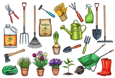 Gardening tools and flowers vector illustration.