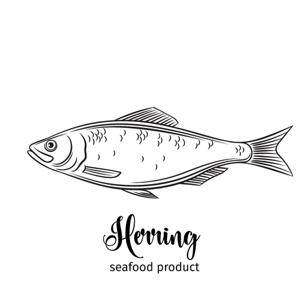 Vector herring.