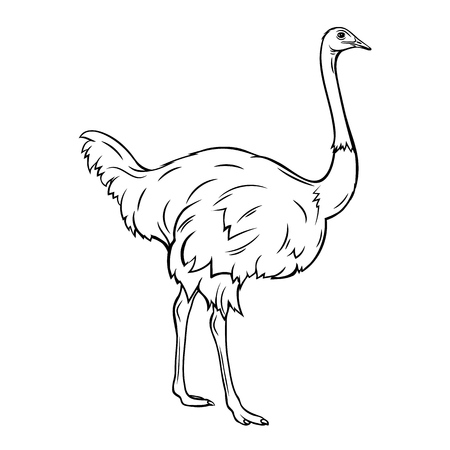 Outline ostrich icon