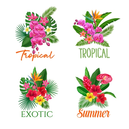Tropical banners, flower