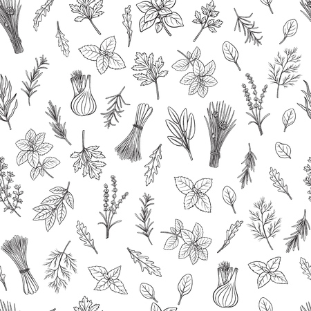 Culinary herbs and spice seamless pattern. Engraved seasoning. Vector illustration. Bay leaf, lemongrass, fennel, dill, cilantro and chives. Thyme, lemon balm, tarragon etc Seasoning design
