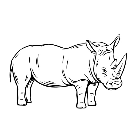 Outline rhinoceros icon. Hand drawn vector illustration of rhino. Zoo animal