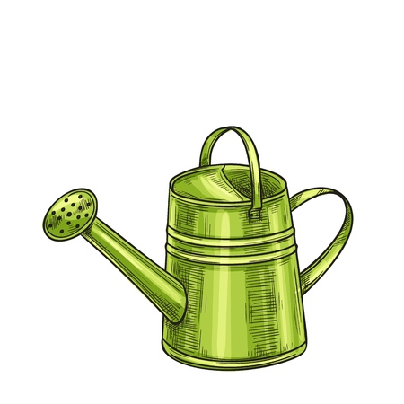 Garden metal watering can. Illustration of Garden tools. Sketch style.
