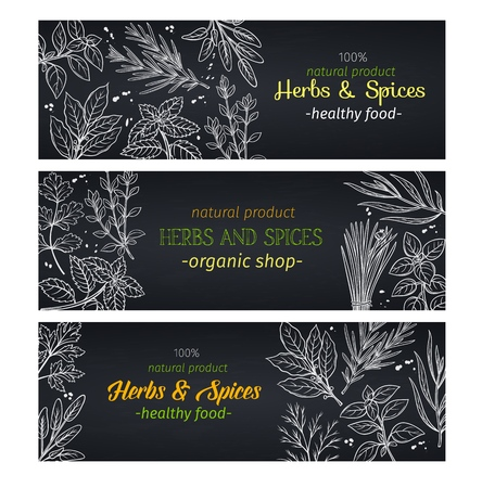Hand drawn herbs and spices , layout for farmers market menu design. Vector illustration template decoration culinary herbs in chalkboard style