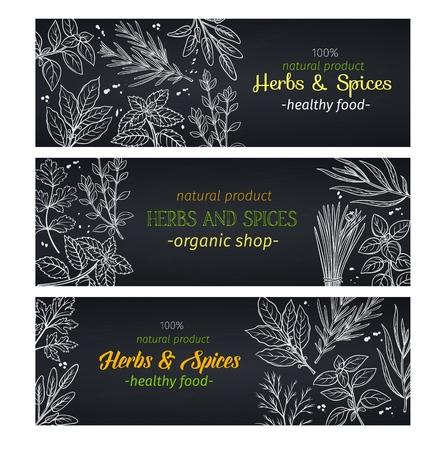 Handgezeichnete Kräuter und Gewürze, Layout für die Gestaltung des Menüs auf dem Bauernmarkt. Vektorillustrationsschablonendekoration Küchenkräuter im Tafelstil