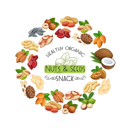 Nuts and seeds. Cola nut, pumpkin seed, peanut and sunflower seeds. Pistachio, cashew, coconut, hazelnut and macadamia. Vector illustration Standard-Bild - 124518275