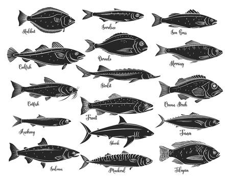 Poissons de silhouettes, fruits de mer Vecteurs