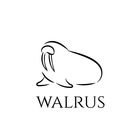 Walrus outline icon.