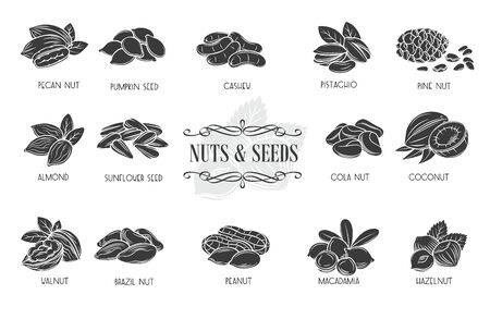 Nuts and seeds glyph icons