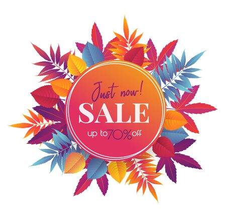 Autumn sale banner with bright autumn leaves