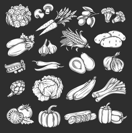 silhouette vegetables icons set, retro style