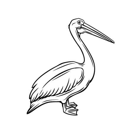 Pelican outline icon. Bird badge for zoo design. Vector illustration. Иллюстрация