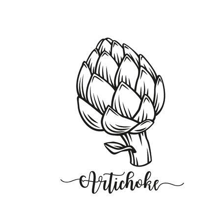 Artichoke green flower heads outline vector illustration. Food artichoke in cartoon style close-up.
