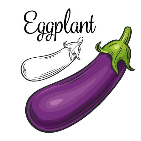 Eggplant vector drawing icon. Vegetable in retro style, outline illustration of farm product for design advertising products shop or market.