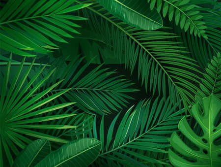 Tropical leaves horizontal background. Jungle exotic banana leaf and areca palm. Wallpaper screen summer tropical paradise. Vector illustration. Vettoriali