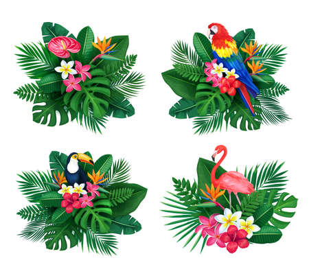 Vector tropical banner set. Summertime design for advertising with jungle birds and leaves and flowers. Toucan, flamingo, parrot, strelitzia, plumeria, areca palm, monstera.