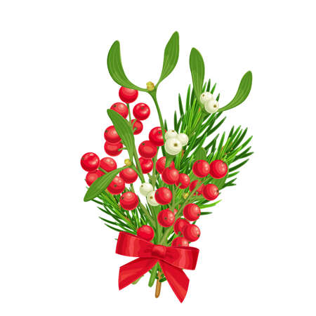 Xmas decoration of spruce twig, holly berries and mistletoe with red bow. Christmas colorful elegant design element, vector illustration in style of realism isolated on white background. Ilustração