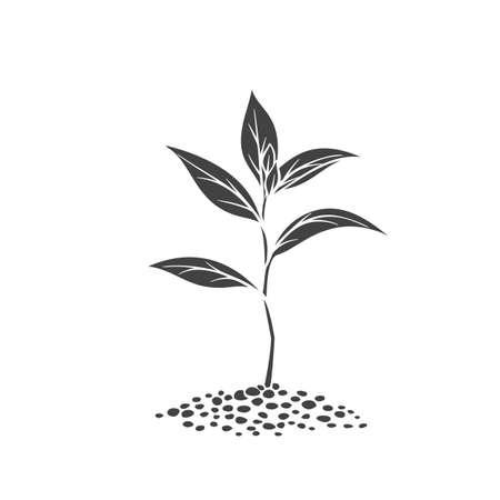 Sprout glyph icon, vector cut monochrome badge. Garden seedlings in reto style.
