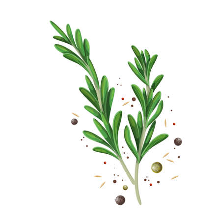 Rosemary sprigs with spice pepper