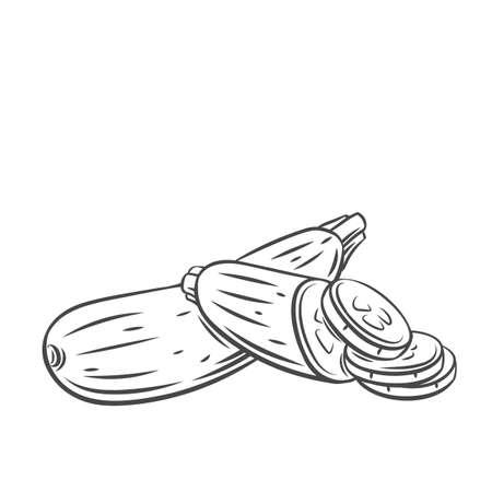 Squash vegetable outline icon Stock Illustratie