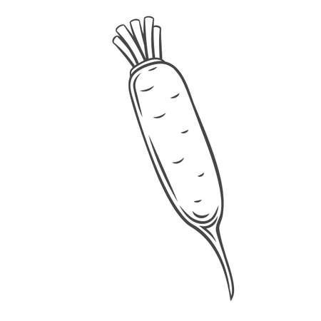 Daikon vegetable outline icon Stock Illustratie