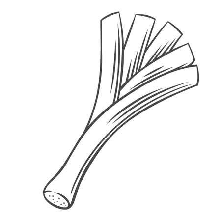Leek vegetable outline icon Stock Illustratie