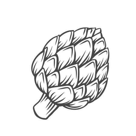 Artichoke flower heads vegetable outline icon