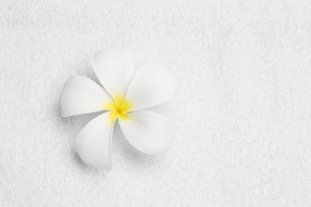 color white: flor en la toalla de limpieza de textura de color blanco