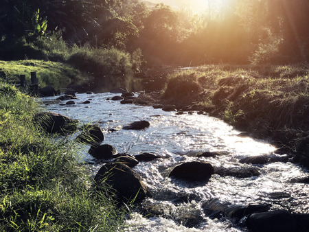 Mountain stream in tropical forest with morning and sunrise. Tranquil waterfall scenery in the natural park. Foto de archivo