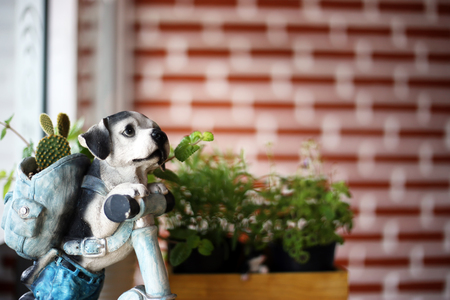 Statue dog pot with succulent cactus cute ornament decoration in home living room. Stock Photo