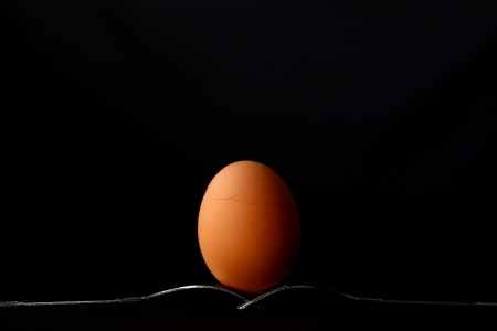 A  hen egg  Still Life on black background photo