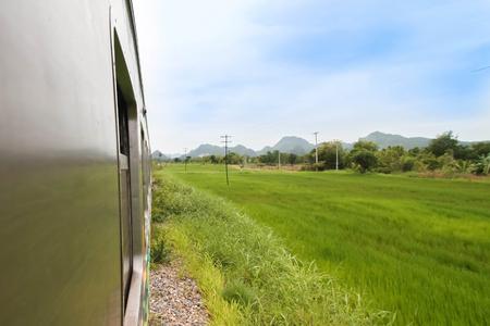 Train in grassland Thailand