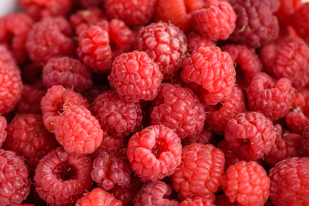 picked: Just picked red and ripe raspberries background