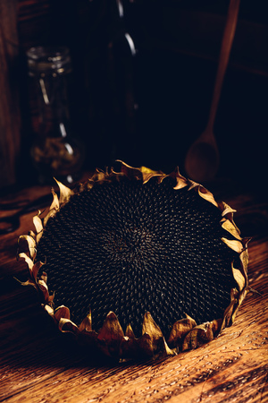 Dry sunflower head on the wooden table 版權商用圖片