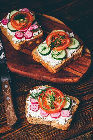 Vegetarian sandwiches with fresh sliced tomatoes, cucumber and radish