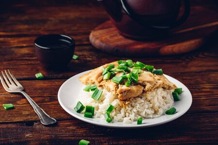 Japanese dish. Rice with scrambled eggs, chicken and green onion Reklamní fotografie