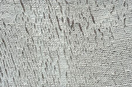 fungous: Rough texture  Stock Photo