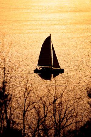 Catamaran on sunset  photo