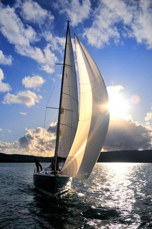 Sailing yacht in back lit  Banque d'images