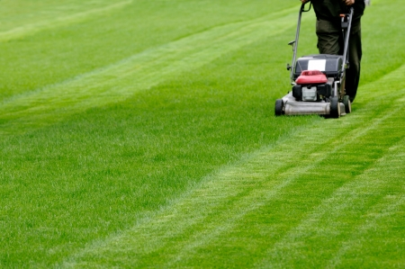 edging: Person cutting grass with mower Stock Photo