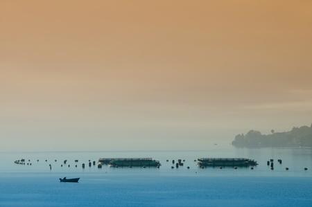 Morning on the fishing farm photo